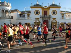 Zurich Maratón de Sevilla5