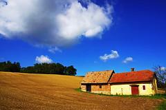 Field.House (eLKayPics) Tags: trees sky cloud house field europa hungary landwirtschaft feld himmel wolke haus bluesky solitary bume ungarn baum blauerhimmel balaton acker magyarorszag zala plattensee agricultur feldhaus solitr zalamegye elkaypics szentpterr zalakomitat lutzkoch