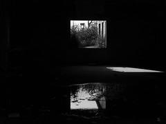 11102014-DSC00156 (sbstnhl - Siti) Tags: bw blanco luz lago sony inundacion negro bn ruinas dsch2 epecuen