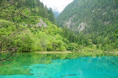 A Mirror Shard ! (john a d willis) Tags: china jiuzhaigou bluelake naturepark semo mirrorshard tibetangoddess
