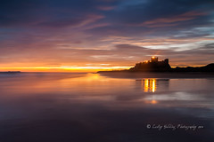 Iconic Bamburgh Castle (pixellesley) Tags: ocean sea sky seagulls seascape castle beach birds silhouette reflections landscape dawn lights sand northumberland bamburgh predawn daybreak hcs