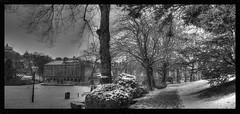 Buxton Park (Andrew Kettell) Tags: trees england blackandwhite snow buxton district peak hdr atmospheric