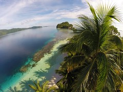 Palm Trees (dionryan1984) Tags: ocean indonesia paradise palmtrees reef drone phantom2 dji gopro yachtlife gopro3