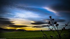Winter Solstice. ( Explored ). (AlbOst) Tags: sunset clouds skies explore solstice wintersolstice winterbeauty abigfave cloudsstormssunsetssunrises