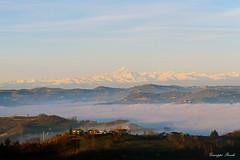 DSC_2838 (Giuseppe Parodi) Tags: landscape piemonte nebbia monferrato monviso d610