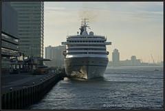 2014-12-14 Rotterdam - Artania - 3 (Topaas) Tags: rotterdam kopvanzuid derotterdam wilhelminapier hollandamerikakade phoenixreisen artania sonya77 sonyslta77 sonyslta77v mvartania
