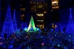 "Caretta Illumination ""Canyon dAzur"" -Winter Illumination 2014-2015 (Shiodome, Tokyo, Japan) (t-mizo) Tags: christmas xmas light japan night canon tokyo illumination   canon5d minatoku  minato lr"