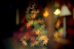Happy Holidays (Carlos A. Aviles) Tags: christmas tree arbol star navidad estrella