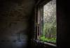 DSC_0011 (Daxter69) Tags: abandonedbuilding abandonedbuildings