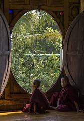 Novicios en Shweyanpye (guillenperez) Tags: lake window lago ventana asia candid burma buddhism monastery monks myanmar inle southeast monasterio oval teak budismo novice teca monjes sudeste asiatico birmania ovalado novicio heho ovalo shweyanpye