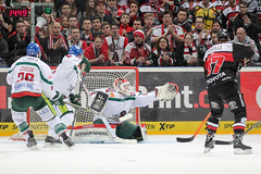 """DEL15 Kšlner Haie vs. Augsburg Panthers • <a style=""""font-size:0.8em;"""" href=""""http://www.flickr.com/photos/64442770@N03/16114748238/"""" target=""""_blank"""">View on Flickr</a>"""