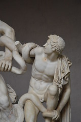 Laoconte by Policleto (Gaia *) Tags: art statue museum greek dad with roman snake vaticano his thats marble favourite beautifull sons vaticani marmo policleto laocontes