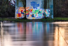 NAZI FREIES BC! (BAD CANNSTATT) (Alex Joos) Tags: bridge color colour river graffiti brcke fluss