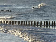 Cte d'Opale, Wissant, vague (Ytierny) Tags: france station horizontal surf paddle vague bois merdunord rivage wissant pasdecalais pieux balnaire littoral ctedopale briselame sitedesdeuxcaps ytierny