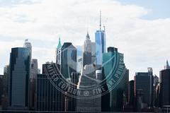 NEWYORK-305