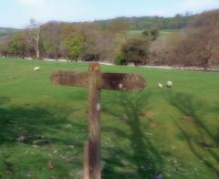 Dales Way waymarker (Majorshots) Tags: cumbria signpost waymarker sedbergh dalesway riverlune ldwa thedalesway lincolnsinnbridge
