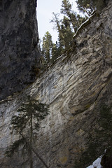 Rock wall along part of path, Johnston Canyon, Banff, Alberta (Jim 03) Tags: blue lake snow mountains ice wall creek river melting path turquoise jim canyon louise covered alberta bow banff icicles johnston jimhoffman jhoffman jim03 wwwflickrcomphotosjhoffman2013 wwwjimahoffmancom