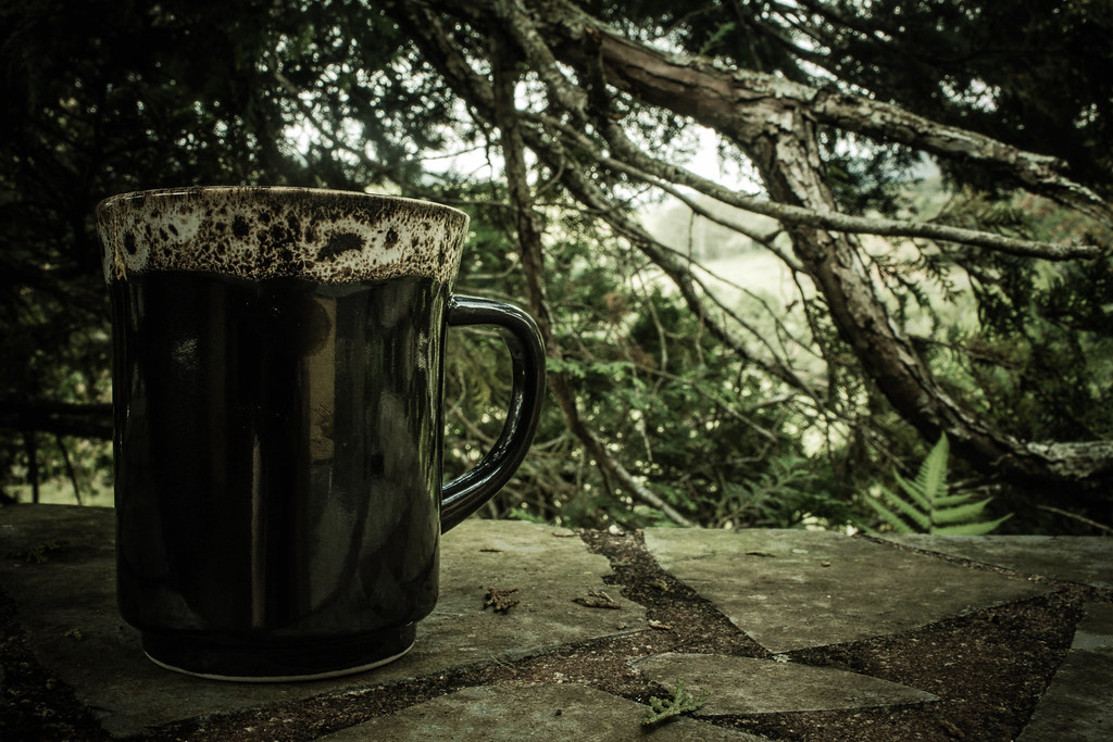 The world 39 s best photos of naturaleza and rancho flickr for Natural stone coffee mugs