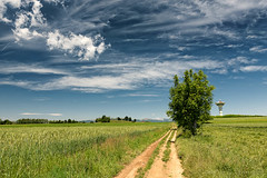 Country landscape in Brianza (Italy) (clodio61) Tags: blue sky italy plant color tree green art nature field clouds rural landscape photography spring europe day natural outdoor path country may sigma sunny 24mm brianza monza lombardy tregasio