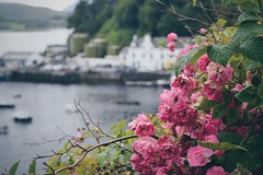 Portree Harbour (Electra_star) Tags: scotland highlands isleofskye portree