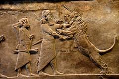 Ashurbanipal II stabs a wounded lion (Sumer and Akkad!) Tags: mesopotamia iraq nineveh kouyunjik lionhuntingscene lion hunt britishmuseum london northpalace ashurbanipalii neoassyrianperiod