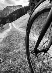 Don't need Tarmac (Torsten Frank) Tags: 404 404firecrest abtei altabadia altoadige badia fahrrad feldweg gadertal italien laufrad rennrad valbadia vorderrad wanderweg weg wirtschaftsweg zipp sdtirol