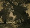 Her Diffraction (raf6x6) Tags: sky tree 120 6x6 analog forest coast blackwhite grove kodak olive croatia 2nd lith rodinal bäume baum lithprint lun chloride se5 kroatien 80mm pentaconsix ammonium oliven biometar moersch bromesko catechol