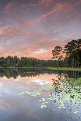 Fiery sunrise glow with reflections (Dragonsaur Long) Tags: sunrise sunriseglow lakevernon lake nature landscape outdoor trees reflections water clouds sky leesville usa glow sunlight orange pink fiery burningclouds