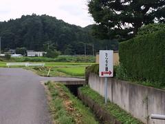Tora Shokudo @ Shirakawa (Fuyuhiko) Tags: tora shokudo shirakawa fukushima     ramen