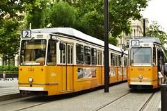 Number two (norella.giorgia) Tags: budapest tram tramstop two 2 number yellow fermata stop mezzoditrasporto giallo nikon d5500 hungary ungheria europa strada