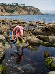 Crab hunting (wi-fli) Tags: england unitedkingdom coast beach crabbing girl conrwall charlestown seaside rockpool rockpools rockpooling holiday summer net