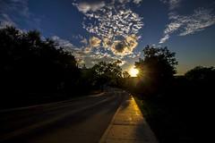 Observatory Dr (Myk Jordan) Tags: madison wisconsin unitedstates campus uw uwmadison university badgers goldenhour sunset sun sundown lake monona mendota isthmus sky clouds cloud water