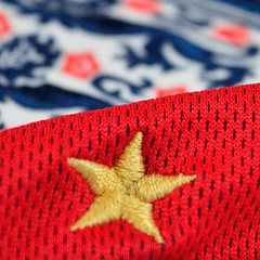 50 years of hurt (robjvale) Tags: nikon d3200 star stars macromonday hmm england soccer football 3lions worldcup 50years red blue white gold shirt win winners history