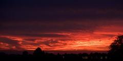 DSC_9689 (AperturePaul) Tags: rotterdam netherlands nikon d600 85mm sky clouds dusk