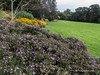 Clyne Gardens 2016 09 30 #19 (Gareth Lovering Photography 3,000,594 views.) Tags: clyne gardens botanical swansea wales flowers trees shrubs park olympus stylus1s garethloveringphotography