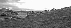 Yorkshire Dales Barn & Sheepfold Landscape. (wontolla1 (Septuagenarian)) Tags: ribblesdale langcliffe stainforth river ribble yorkshire dales landscape pub panasoniclumix14mmf25asphpancake black white mono field barn settle sheep pen shelter penfold blackwhite englandscotlandwales walk hike walking hiking ramble rambling lumix g3