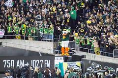 Oregon Ducks vs Stanford-214 (boudreaudavid83) Tags: oregon season duck football 2014