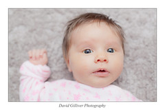 Hello there (Pikebubbles) Tags: baby flickr babies 365 la newbaby project365 365project davidgilliver davidgilliverphotography lamaygilliver