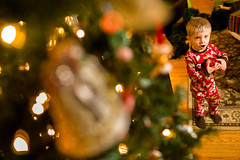 20141201_Christmas Decorating_IMG_0288 (Tom Cannon) Tags: louisvillephotographer kentuckyphotography kyphotography louisvillephotography kentuckykyphotographer thomascannonphotographyllc thomascannonphotography