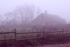 Misty mornings (Whenleavesfall) Tags: morning autumn house mist tree nature water beautiful fog fence early sweden smoke dream meadow pale dreamy höst damp hage öland morgon dimma dansar äng älvorna