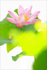 Lotus Flower Paintings / Photographic images using Akvis Oil Paint Filter (Bahman Farzad) Tags: china flower wall painting cambodia paint image lotus drawing paintings drawings vietnam filter oil budha decor based walldecor lotusflower walldecorations floraldecorations interiordecorations akvis imagebased lotusflowerpainting lotusflowerpaintings lotusfloweroilpaintings lotusfloweroilpainting