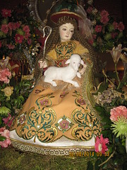 The Young Blessed Virgin Mary (Leo Cloma) Tags: mary philippines virgin bulacan blessed marian malolos cloma
