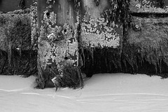 Shoreline (Jim-Paterson) Tags: blackandwhite seaweed beach monochrome july dorset grayscale groyne bournemouth 2014