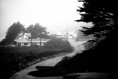 stretching to the other side where it is sure to meet itself (Super G) Tags: ocean california trees sea blackandwhite bw house mist home fog unitedstates haunted creeping mossbeach enveloped nikon230