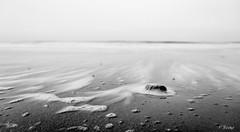 Sea scum (Fab Boone Photo) Tags: black white sea scum landscape fabienboone fabboone