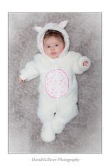 Petit Lapin (Pikebubbles) Tags: christmas baby cute babies 365 la newbaby 2014 project365 365project davidgilliver davidgilliverphotography lamaygilliver