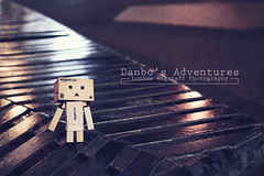 A Cold And Dark Night (loulovesdanbo) Tags: stilllife night dark toy photography lights photo sweet outdoor exploring figure emotive danbo toyphotography revoltech danboard danboru danbomini danbophotography