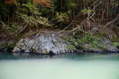 (ddsnet) Tags: travel plant japan sony autumnleaves 99  nippon  kansai  autumnal nihon  slt backpackers       kyotofu    singlelenstranslucent  99v