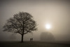Sherdley......... (Digital Diary........) Tags: uk winter mist fog freezing sthelens merseyside sherdley sherdleypark