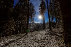 Lichtung (Fuwa Photography) Tags: blue winter sky snow beautiful canon germany deutschland amazing unreal baden furtwangen schwarzwald blackforest efs amazin hochschwarzwald neukirch 60d 1018mm